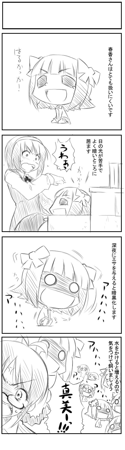 idol_33.jpg