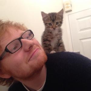 ed cat