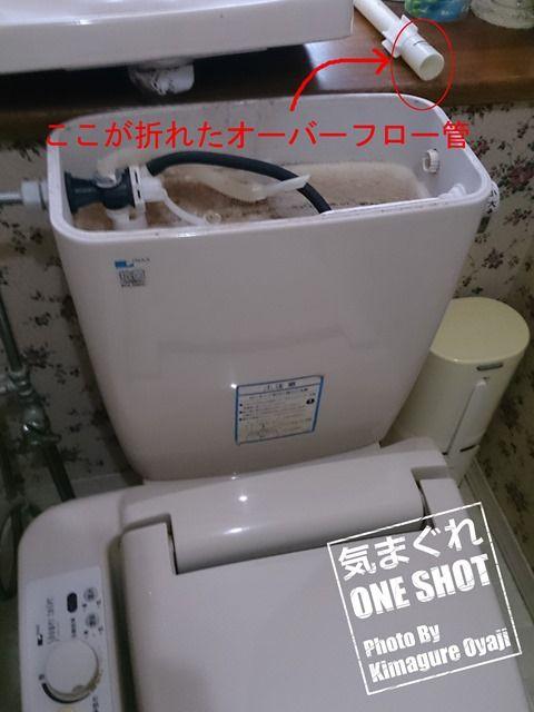 DSC_kimagure_0000.jpg