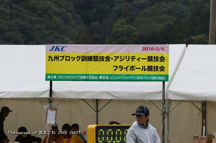 EOS 7D Mark II_kimagure_03168_R