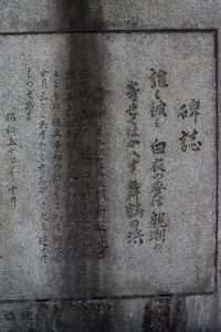 DSC_0017-2.jpg