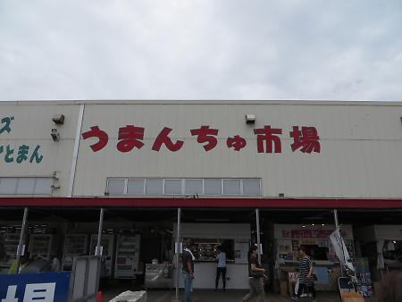 t_IMG_2706.jpg