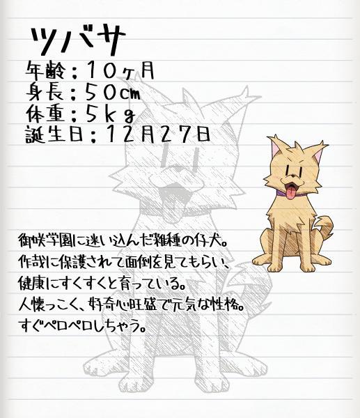 aint_23_tsubasa.png