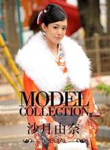 モデルコレクション 117
