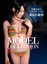 モデルコレクション 17