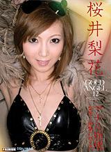 ゴールドエンジェル Vol.12