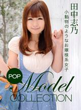 モデルコレクション 114