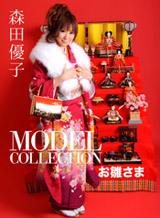 モデルコレクション 25