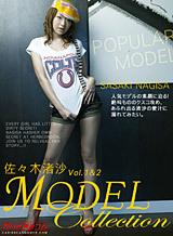 モデルコレクション