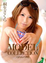 モデルコレクション 90