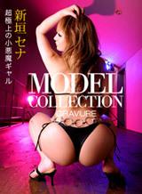 モデルコレクション 93