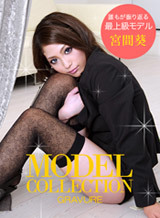 モデルコレクション 103