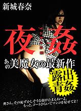 夜姦 8 ~淫らな美魔女