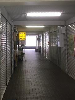 nishikino11.jpg