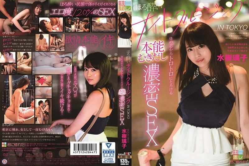 水樹璃子 ほろ酔いナイトクルージング IN TOKYO 体の芯からトロトロにとろける本能むきだし濃密SEX