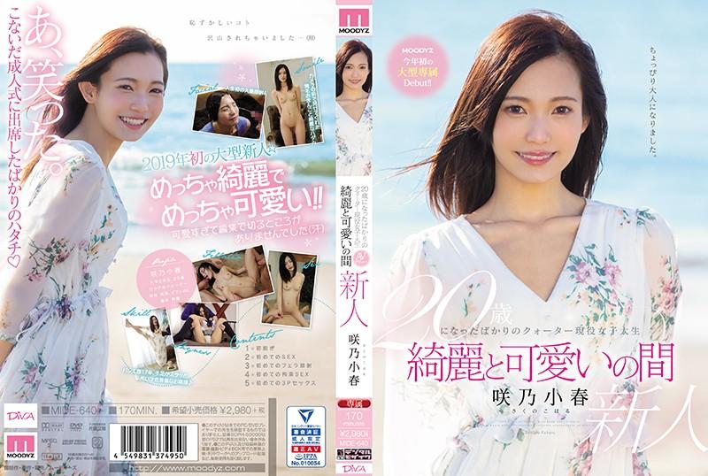 咲乃小春 20歳になったばかりのクォーター現役女子大生 綺麗と可愛いの間