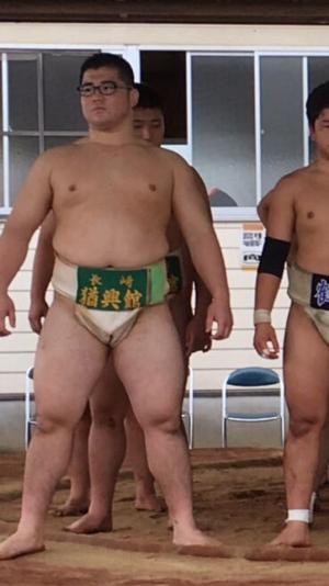megane-debu-sumo (5)