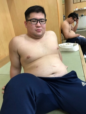 megane-debu-sumo (3)