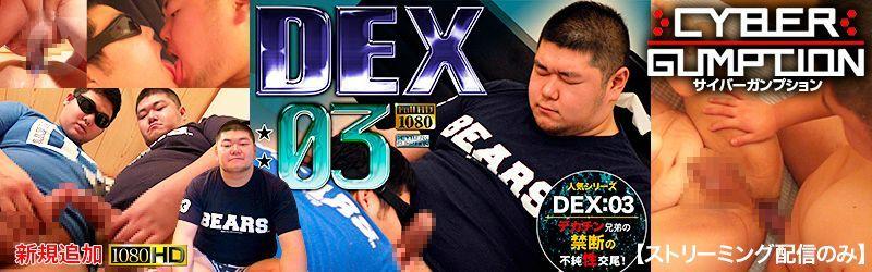 DEX03デカチン兄弟の不純性交尾