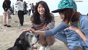 【放送事故】視聴率の為にパンチラするアイドルや女子アナww