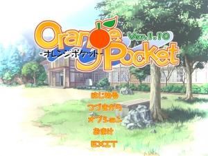 orange_pocket00000.jpg