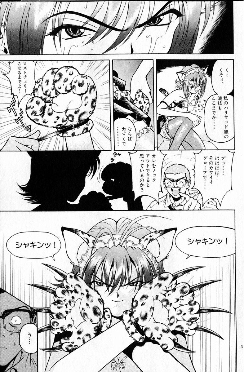 peach6_053[1]