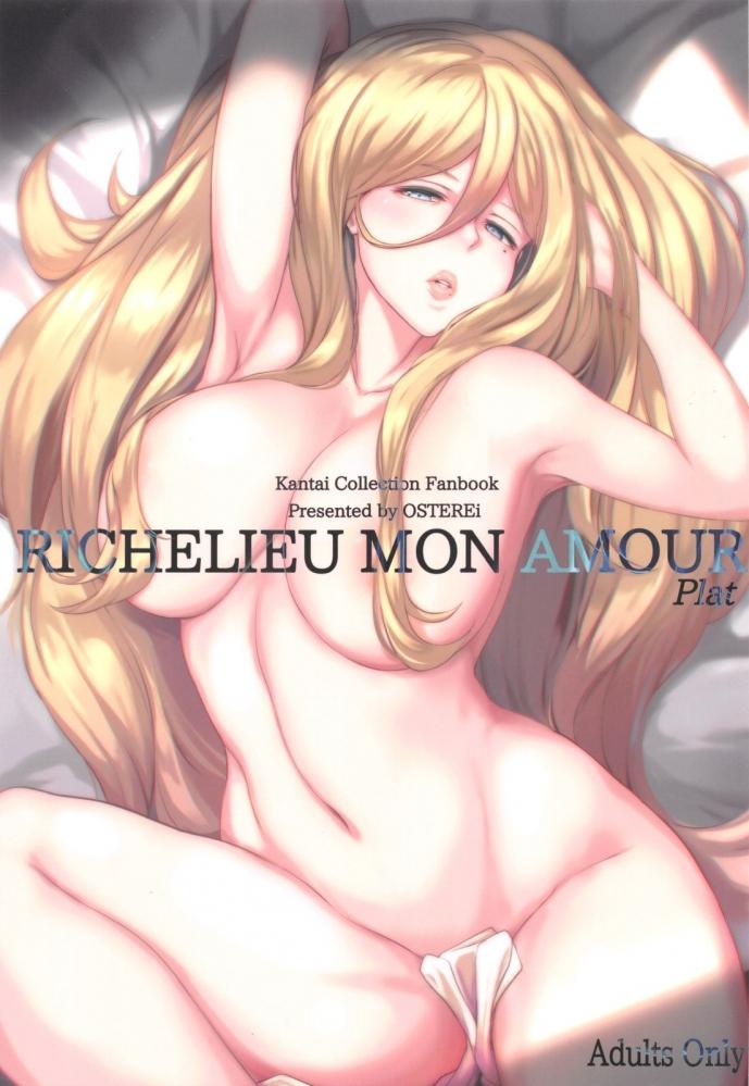 Richelieu(リシュリュー)「今日もザンギョウなの?」