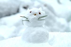 猫雪だるま