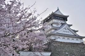 小倉城 桜