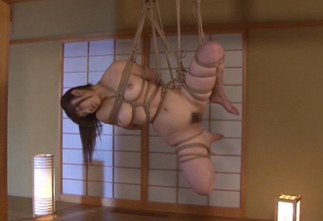 使用人に犯された挙句に緊縛されたまま種付けプレスで中出しされ吊るされるお嬢様。しかもなんと姉妹揃って緊縛責めに陥る結末!