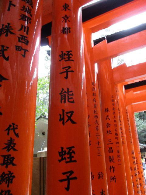 KYOTOre011.jpg