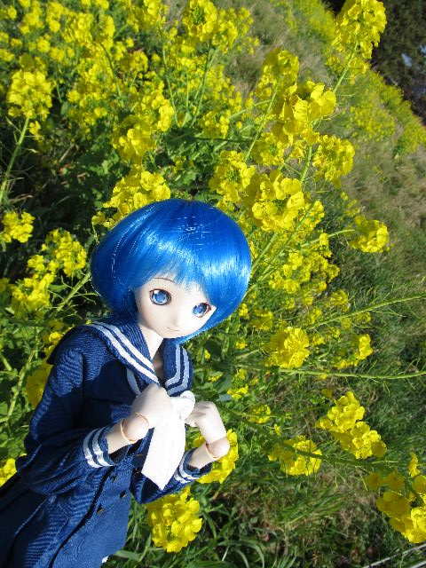 NANO_n66.jpg
