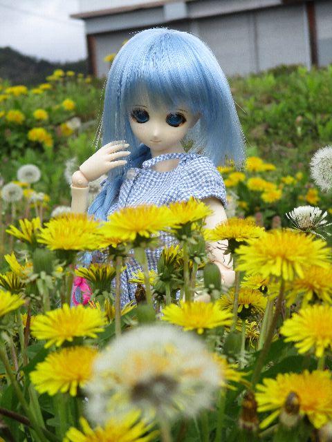 SoulKiz81.jpg