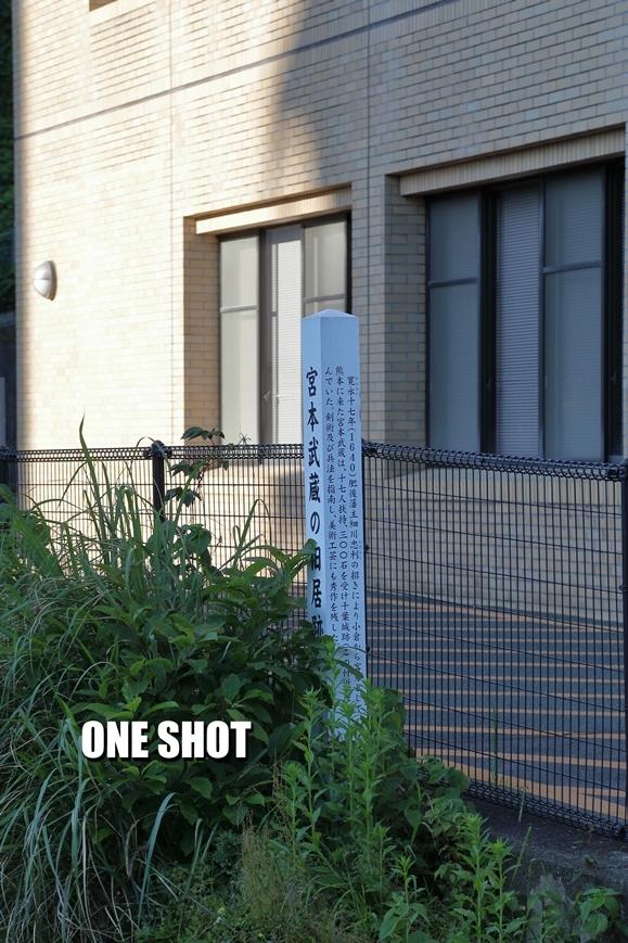 2017_05_09_00479.jpg