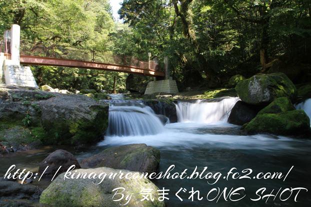 EOS 7D_kimagure_33147