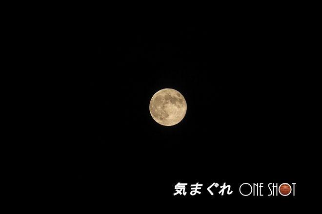 EOS 7D_kimagure_39274_1