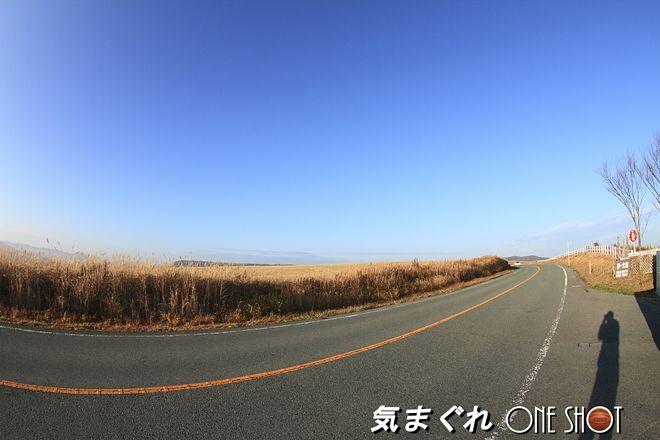 EOS 7D_kimagure_40435