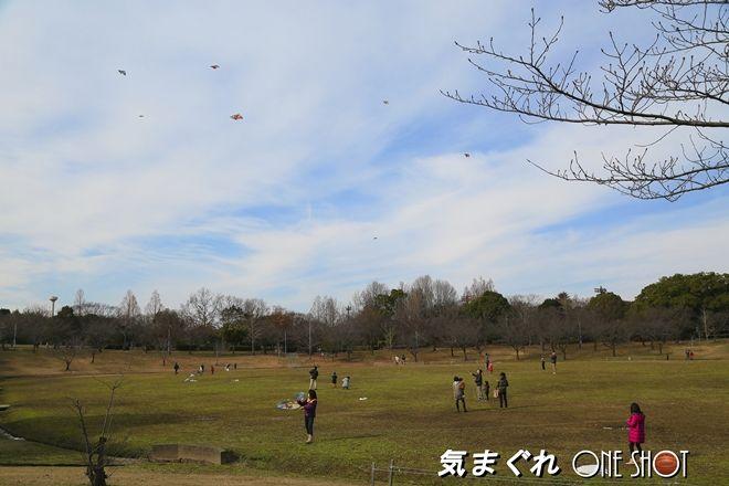 EOS 5D Mark III_kimagure_05413