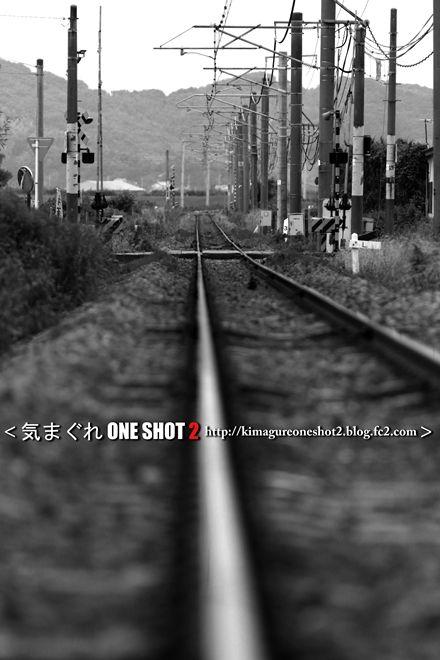 EOS 7D Mark II_kimagure_00377