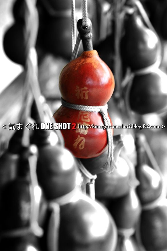 EOS 7D Mark II_kimagure_02247