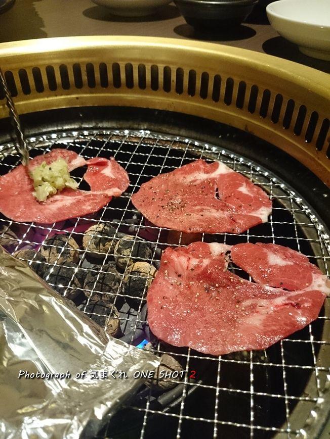 DSC_kimagure_0436.jpg