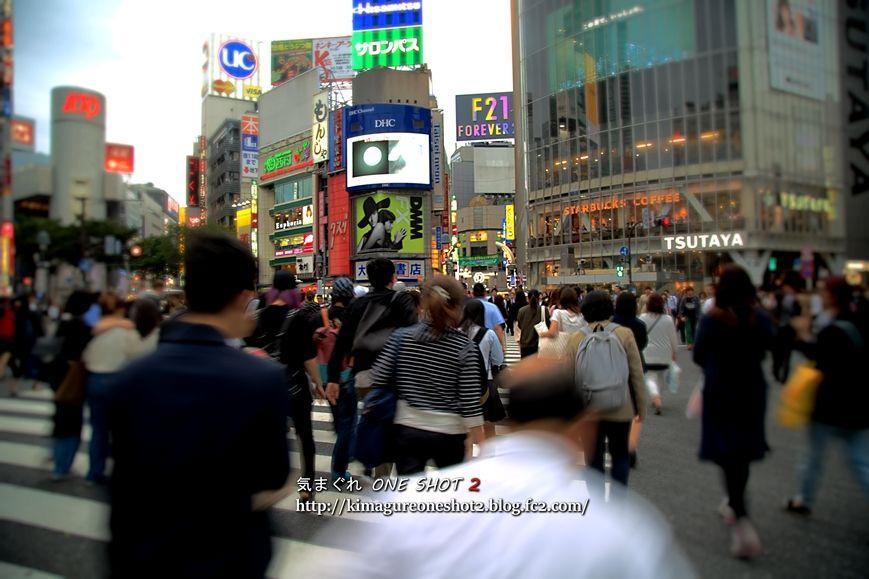 5D3_kimagure_12533_R.jpg