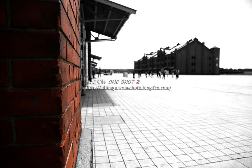 5D3_kimagure_12621_R.jpg