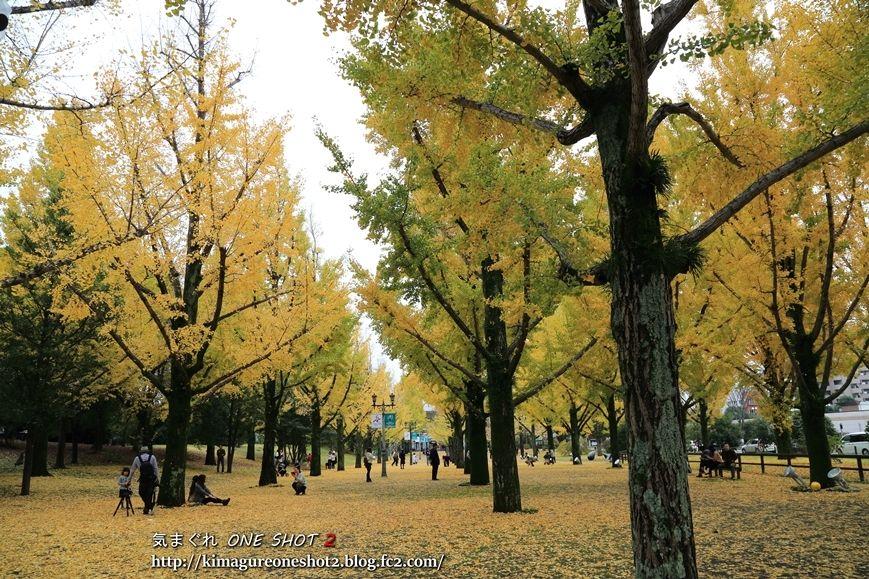 5D3_photoman_13782_R.jpg