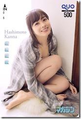 hashimoto-kannna-300307 (2)