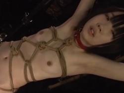 つるぺた貧乳ミニっ子をSM緊縛して股間のマンピーライン一直線に食い込ませて擦って敏感クリを刺激し続ける調教 - エロ動画 エロビデオネット(4)