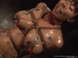熟女 巨乳 美熟女 拷問 エロい 全裸 バイブ 乳 縛り 巨(6)