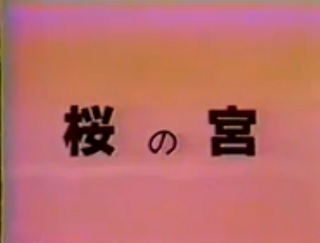 裏ビデオ 桜の宮