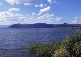 琵琶湖漁師「やべぇ…外来魚駆除しすぎた…」